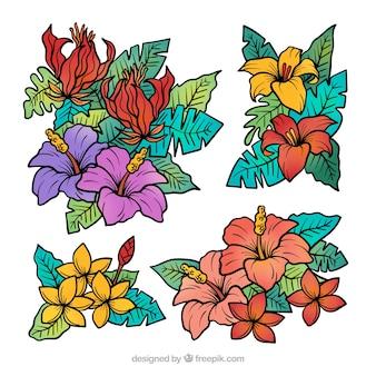 Colección adorable de flores tropicales dibujadas a mano
