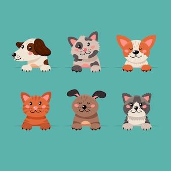Colección de adorables mascotas domésticas