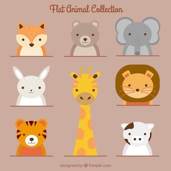 Colección de animales adorables en diseño plano