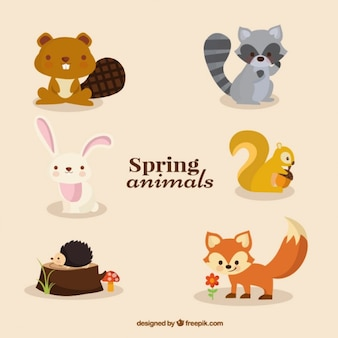 Colección de animales adorables