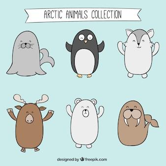 Colección de animales árticos dibujados a mano