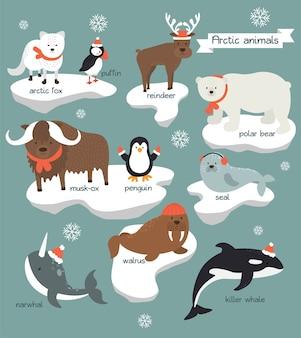 Colección de animales árticos que visten ropa navideña