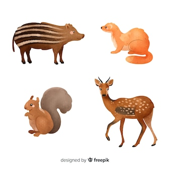 Colección de animales del bosque acuarela
