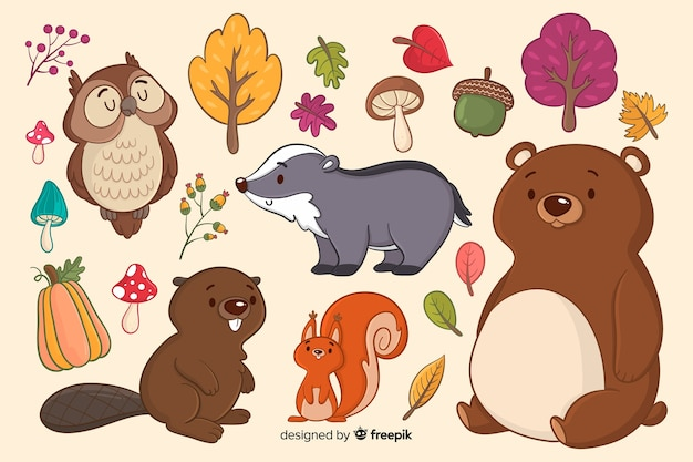 Colección de animales del bosque dibujados a mano
