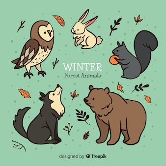 Colección animales bosque invierno