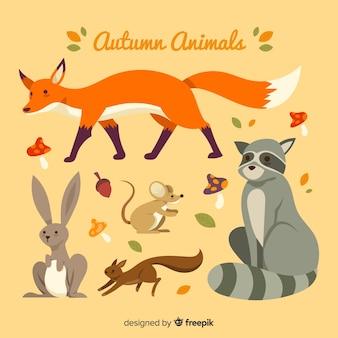 Colección de animales de bosque de otoño dibujados a mano
