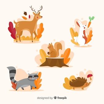 Colección de animales de bosque en otoño en diseño plano