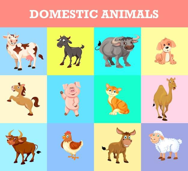 Colección de animales domésticos
