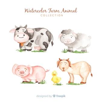Colección de animales de granja en acuarela