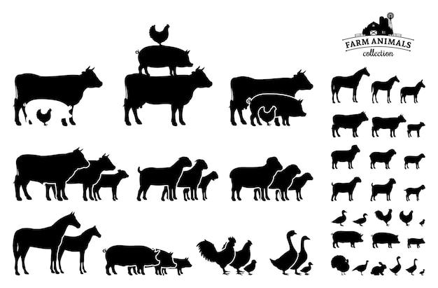 Colección de animales de granja aislado en blanco