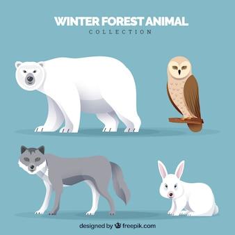 Colección de animales de invierno