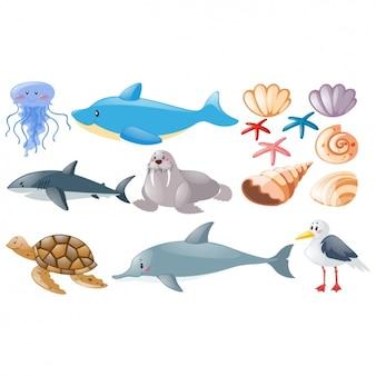 Colección de animales del mar