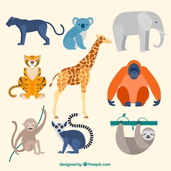 Colección de animales salvajes en diseño plano