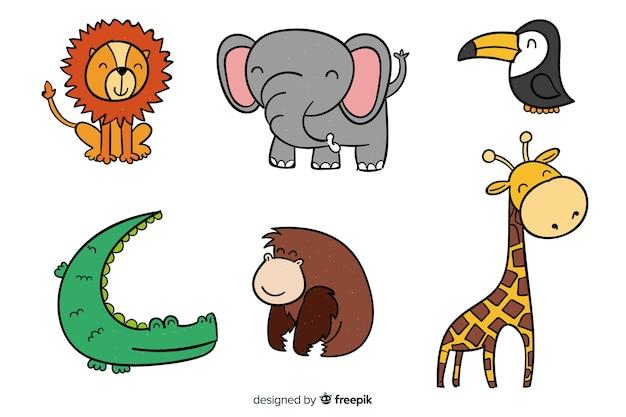 Colección de animales tropicales dibujado a mano