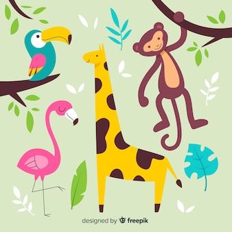 Colección de animales tropicales dibujados a mano