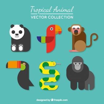 Colección de animales tropicales en estilo moderno