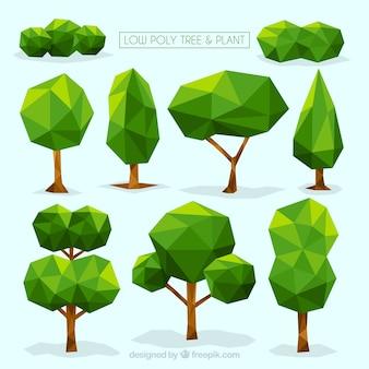 Colección de árboles y arbustos en diseño poligonal