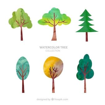 Colección de árboles en estilo acuarela
