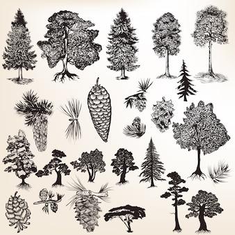 Colección de árboles con piñas dibujadas a mano