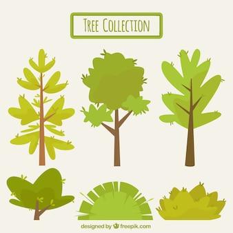 Colección de árboles vintage y arbustos