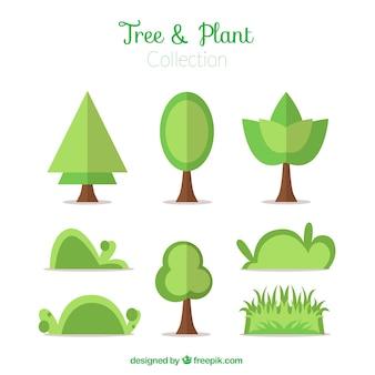 Colección de arbustos y árboles en diseño plano