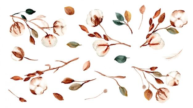 Colección de arreglos de acuarela de flores de algodón