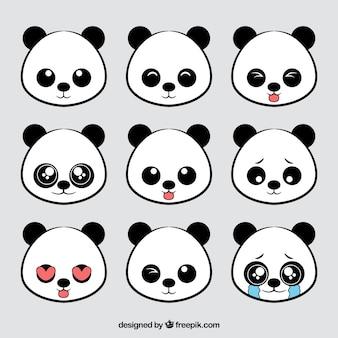 Colección de avatares de osos panda