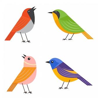 Colección de aves de diseño plano colorido