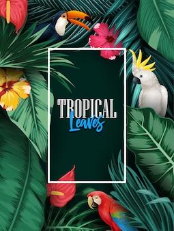 Colección de aves y fondo de plantas tropicales.