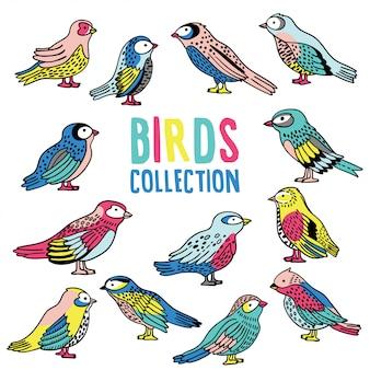 Colección de aves de vector