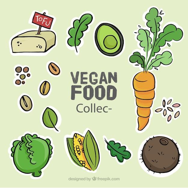 Colección de bocetos de comida vegana deliciosa