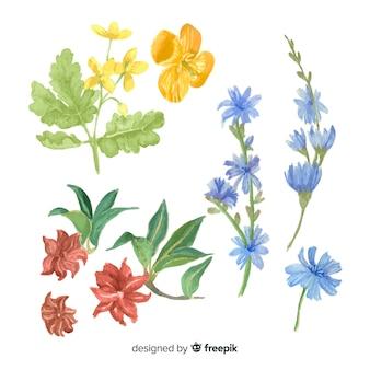 Colección bocetos de especias y hierbas realistas dibujados a mano