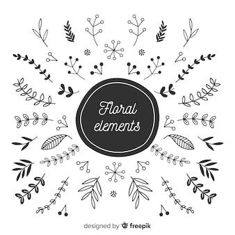 Colección bocetos florales decorativos