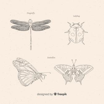 Colección bocetos de insectos dibujados a mano