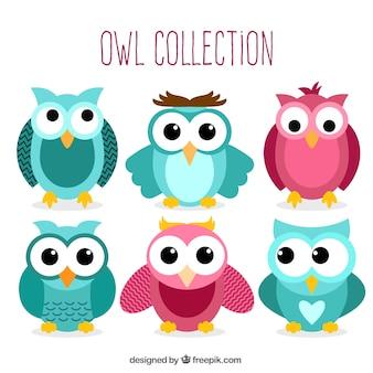 Colección de bonitos búhos con los ojos grandes