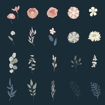 Colección botánica doodle