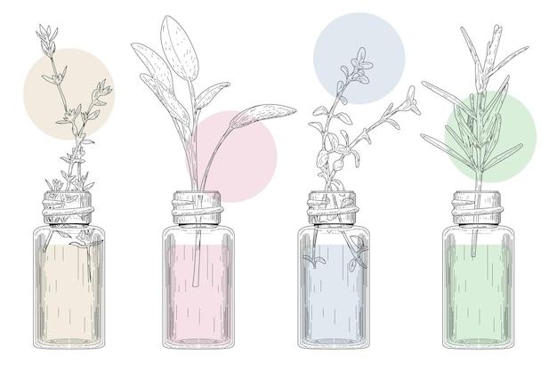 Colección de botellas de aceite esencial de acuarela