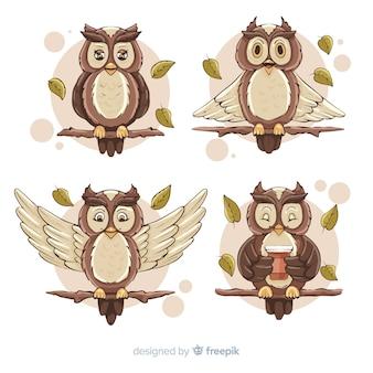 Colección de búhos dibujados a mano