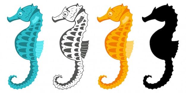 Colección de caballitos de mar