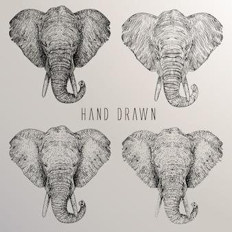 Colección de cabezas de elefante dibujadas a mano