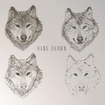 Colección de cabezas de lobo dibujadas a mano