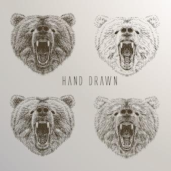 Colección de cabezas de osos dibujados a mano