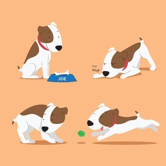 Colección de cachorros pitbull de diseño plano
