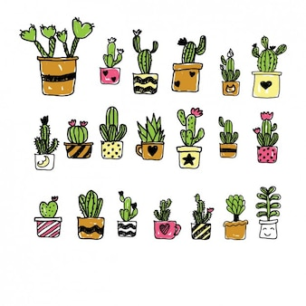 Colección de cactus de dibujo pintados a mano