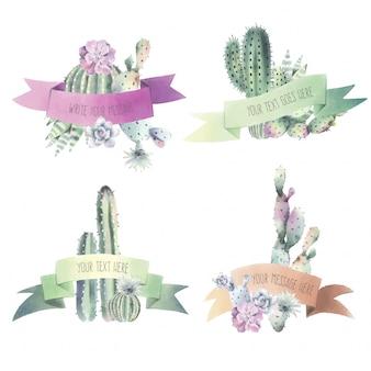 Colección cactus & ribbon acuarela