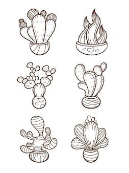 Colección cactus y suculentas dibujados a mano
