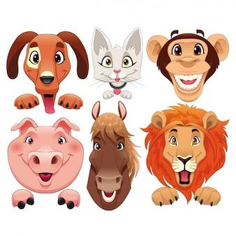 Colección de caras de animales