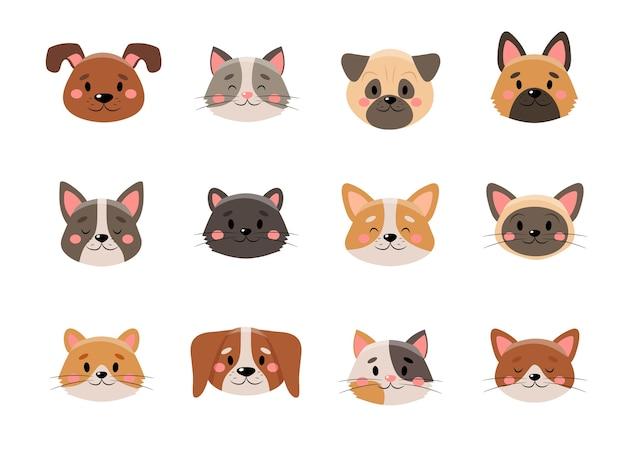 Colección de caras de mascotas lindas, sobre fondo blanco