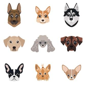 Colección de caras de perros. conjunto de diferentes razas.