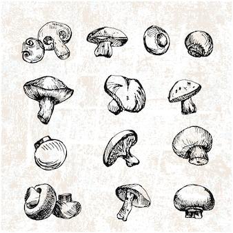 Colección de champiñones dibujados a mano